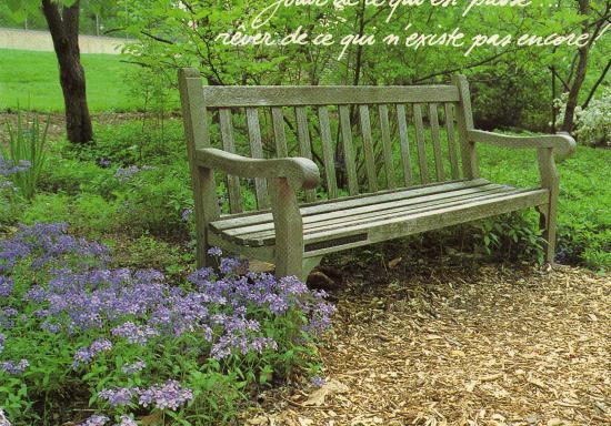 Rêver sur un banc