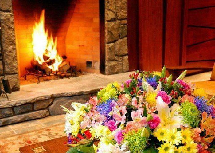 fleurs et feu