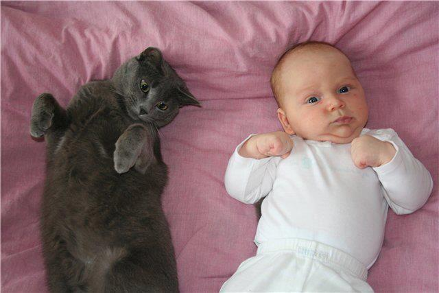 chat-et-bebe.jpg