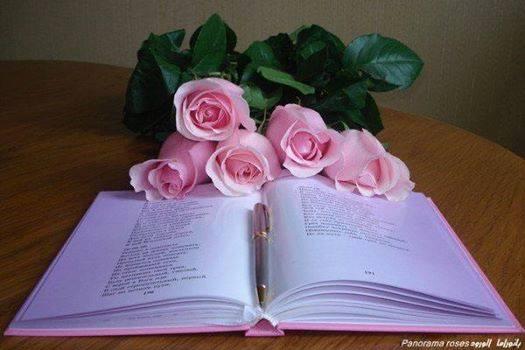 Livre rose
