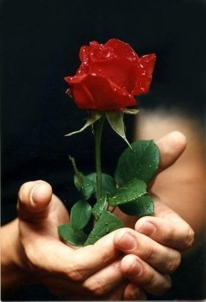 rosedansmain.jpg