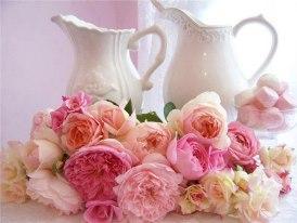 rosesavecpots.jpg