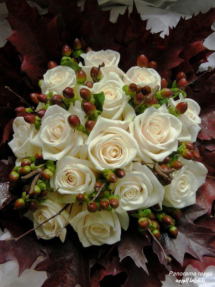 rosesblanch.jpg