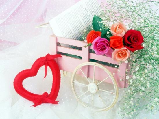 rosesbrouette.jpg