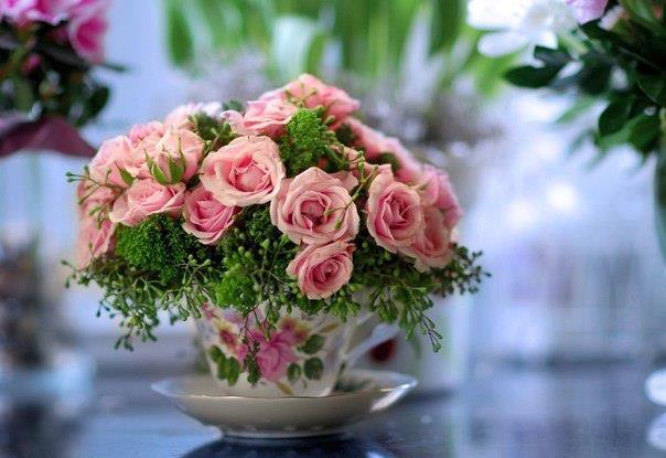 rosesdanstasse.jpg