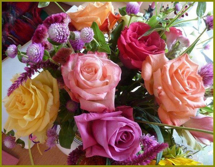rosesdiverses.jpg