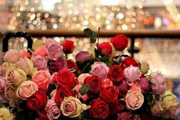 rosesmultic.jpg