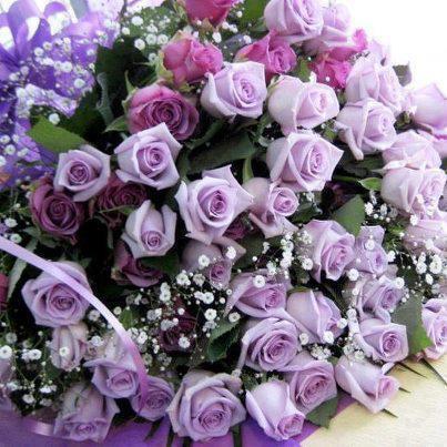 rosesparmes.jpg