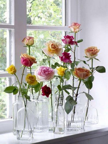 rosespoursit.jpg