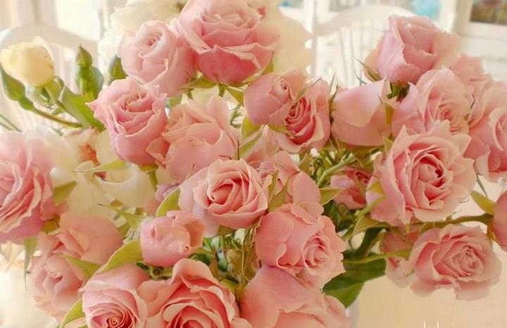 rosesrobouq.jpg