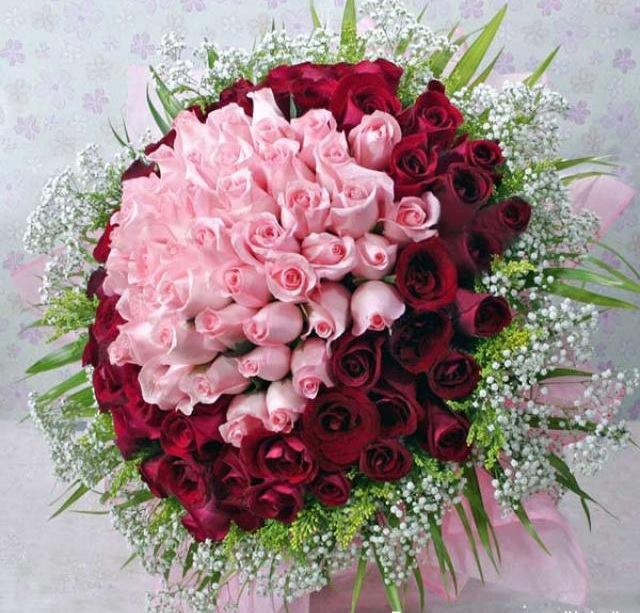 rosesrougrosesbou.jpg