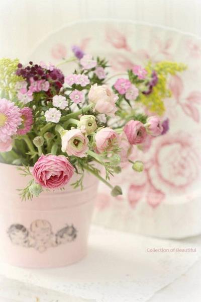 rosessite.jpg