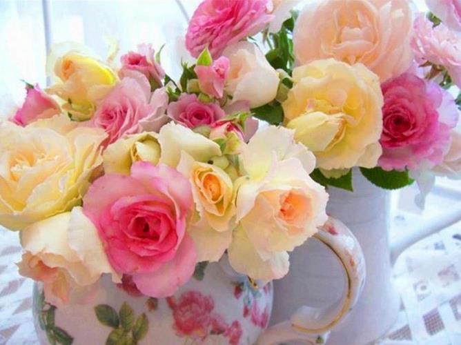 rosestas.jpg
